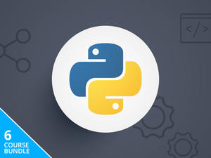 Learning Python Programming course - just $39