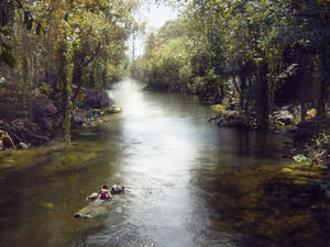 The Jungle Book review: An artistic masterpiece