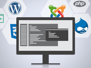 Complete web development training under one roof with OSTraining Developer Courses - now $65