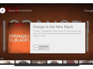 Android TV's universal search feature now supports Netflix