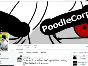Two 19-year-old members of Lizard Squad and PoodleCorp charged by feds