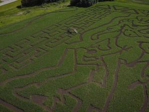 BioWare is advertising Anthem with a corn maze