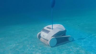 Ditch one of your chores with an automatic pool cleaner