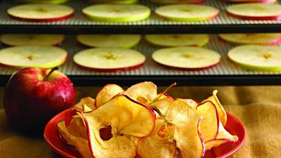 Suck out the moisture, not the fun, with these dehydrators